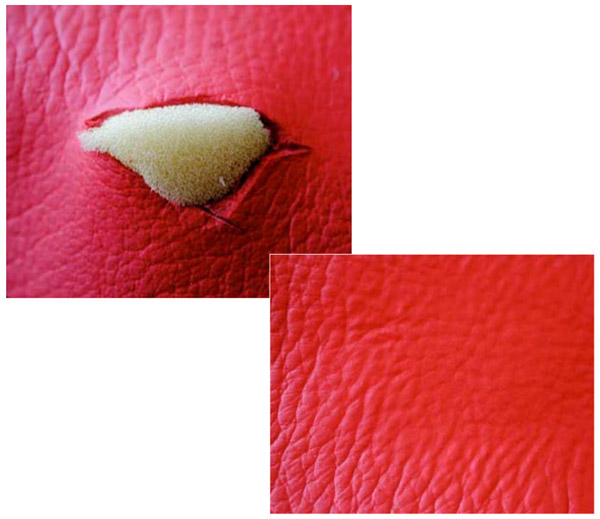 The Best Leather And Vinyl Repair In Pensacola Florida